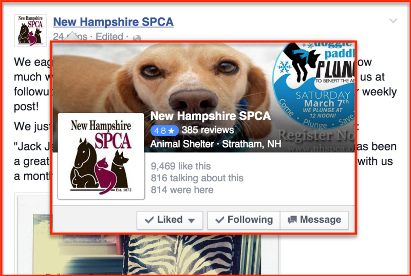 new-hampshire-spca